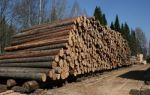 Кому положен лес на строительство дома?